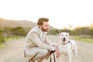imagen de un labrador con su dueño