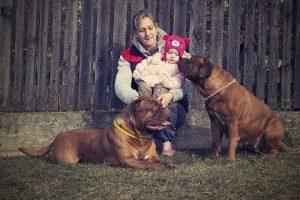 imagen de un Dogo de Burdeos con su familia y el peque