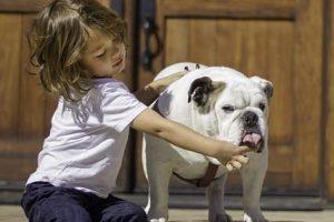 imagen de un bulldog ingles con el peque en la entrada de casa